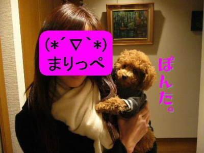 Photo_210